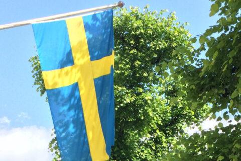 Sweden: An Unexpected Vegan Paradise