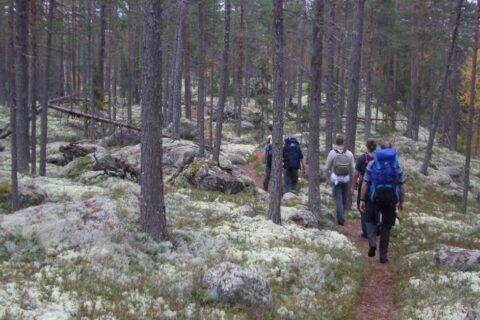 Hiking in Sweden