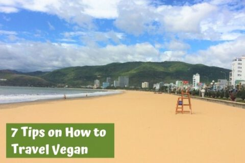 Travel vegan