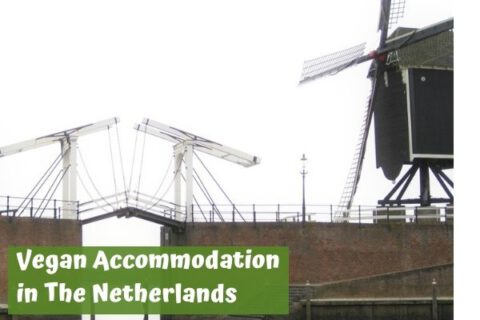 Vegan accommodation in the netherlands