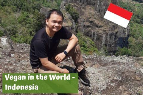 Vegan in Indonesia