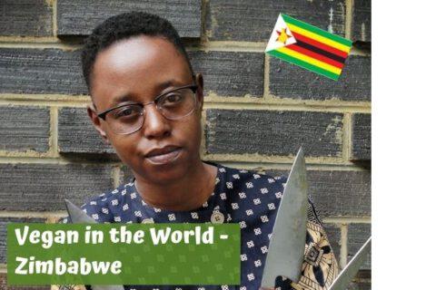 Vegan in zimbabwe
